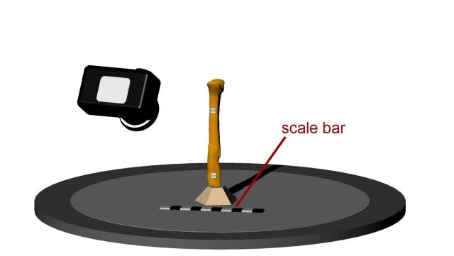 scale_bar